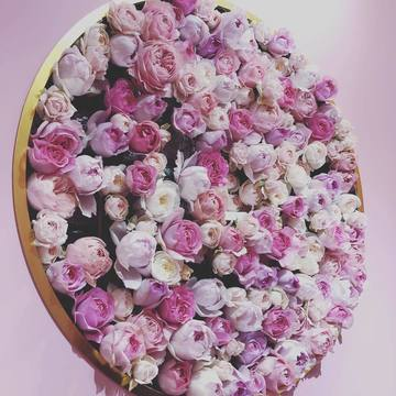 roseig.jpg